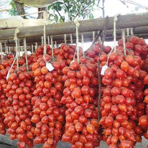 pomodorino del piennolo